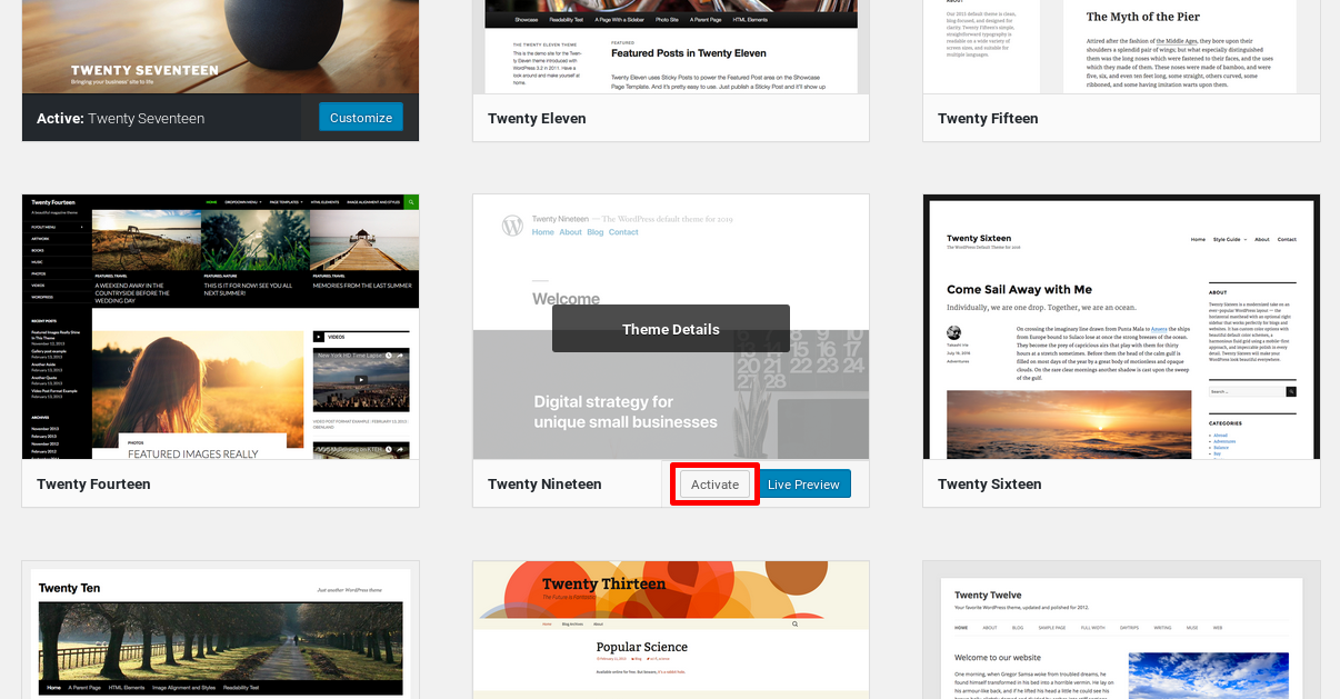 Activating the Twenty Nineteen theme on WordPress 5